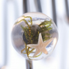 Rockpool starfish adjustable orb ring- small to medium size