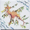 Leafy Seadragon Design Ceramic Tile Trivet with Cork Backing