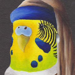 Budgie Greeting Card, Budgie with a Pearl Earring