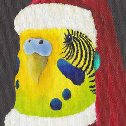 Budgie Christmas card