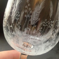 Set of Fen wine glasses