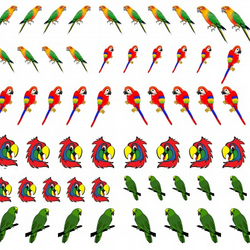 Parrot Nail Decals