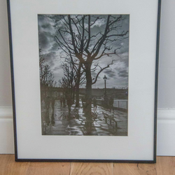Southbank trees, London photographic print