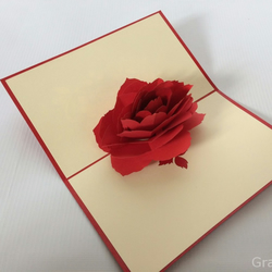 Big rose Fantastic Flower Handmade Kirigami & Origami 3D Pop UP Greeting Cards F