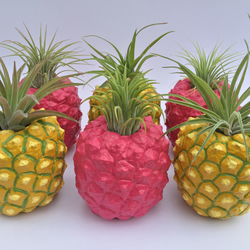 Hot pink pineapple planter with live air plant!