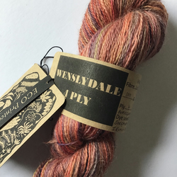 Eco Printed & Hand Painted Wenslydale 4ply 100g   ( col: Gardeners Delight )