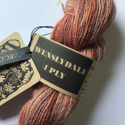 Eco Printed & Hand Painted Wenslydale 4ply 100g   ( col: Dropped Petals )