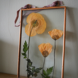 Bespoke pressed flower art - Poppy