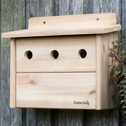 Bird nesting box, sparrow, bird house, hand made, western red cedar - Sennen