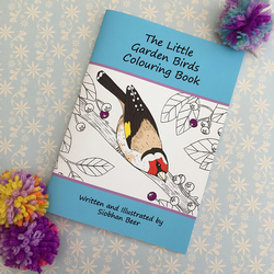 The Little Garden Birds Colouring Book