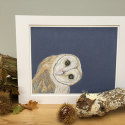 Limited Edition Giclee Print of Inquisitive Barn Owl