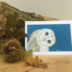 Inquisitive Barn Owl - Hand made wildlife cards