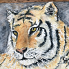 Original watercolour of Tyrone the Tiger  - ACEO - free UK postage